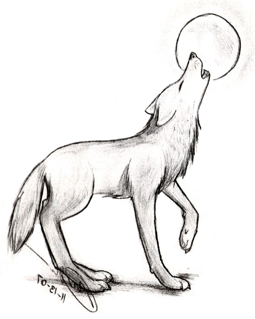 Wolf clipart easy banner free library Wolf Sketch Easy at PaintingValley.com | Explore collection ... banner free library