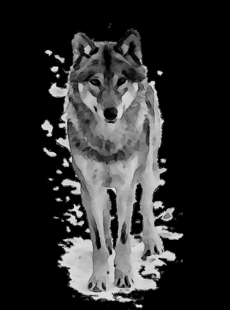 Wolf dog clipart clip art library Wolf Cartoon clipart - Wolf, Wildlife, Dog, transparent clip art clip art library