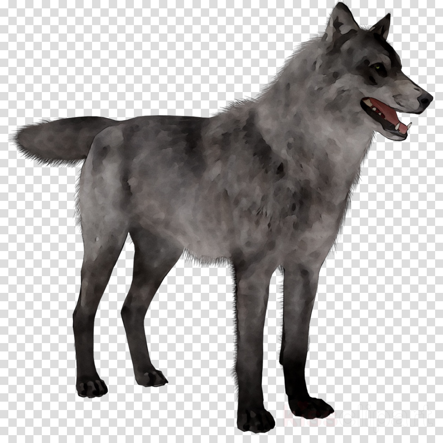 Wolf dog clipart transparent clip art black and white stock Wolf Cartoon clipart - Dog, Wolf, transparent clip art clip art black and white stock