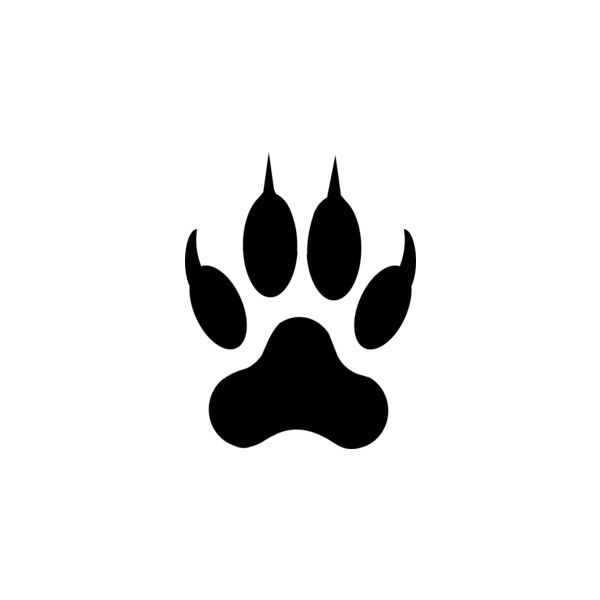 Wolf footprints clipart banner freeuse Lion Footprint clip art ❤ liked on Polyvore   Lions ... banner freeuse