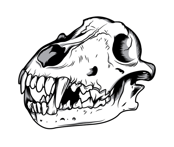 Wolf skull clipart png clip black and white download How to Create a Three Color Wolf Skull in Illustrator clip black and white download