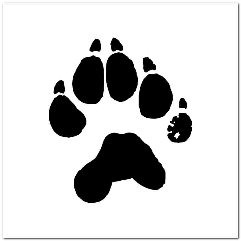 Wolverines paw clipart clip art transparent download Wolverine Paw Print Tracks Decal Sticker clip art transparent download