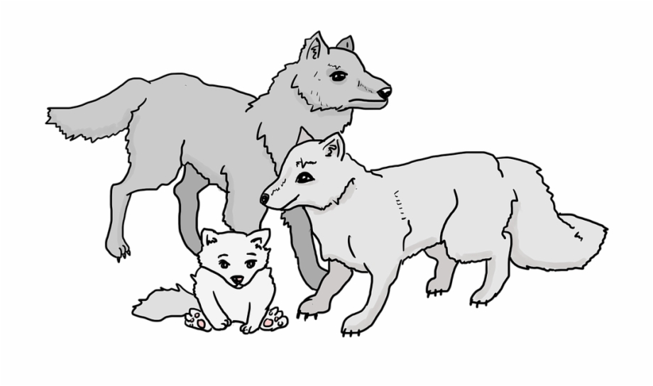 Wolves familys clipart clip royalty free Wolves Wolf Pack Wolf Cub Family Beast Animals - Clip Art ... clip royalty free
