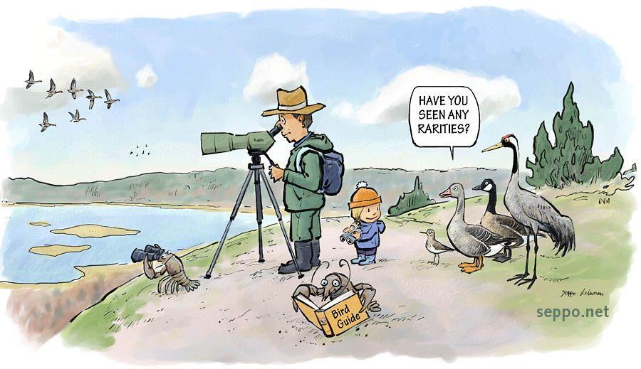 Woman bird watcher clipart jpg download Behind you | Birding | Bird watching, Birds, Cartoon jpg download
