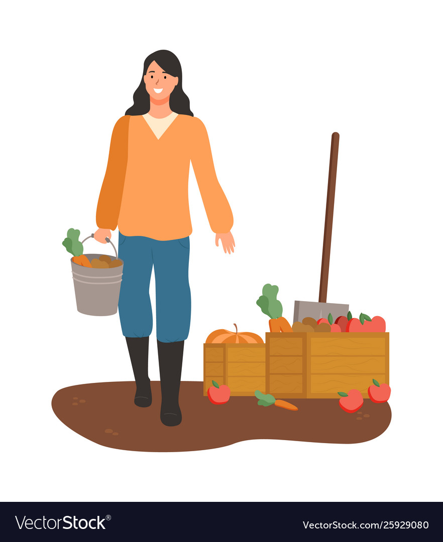 Woman carrying wood clipart clip stock Woman carrying carrots in bucket box with veggies vector image clip stock