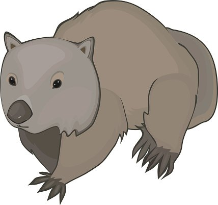 Wombat pictures clipart svg library download Wombat premium clipart - ClipartLogo.com svg library download