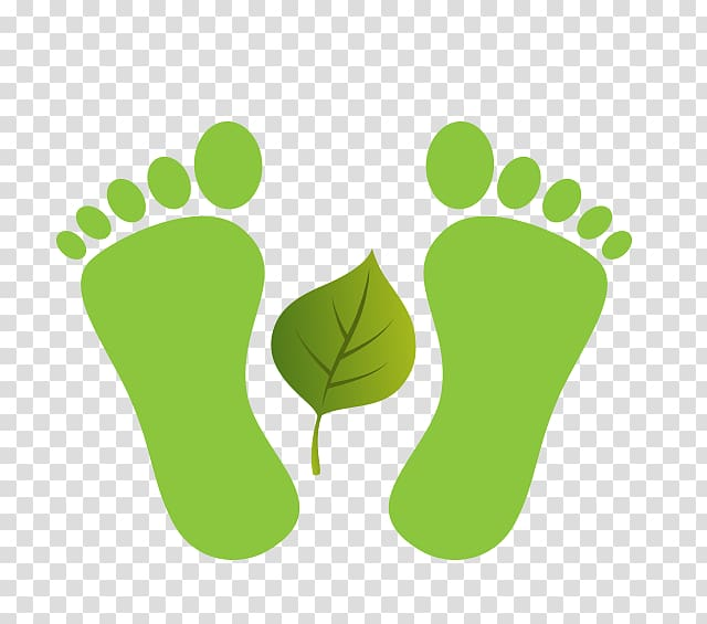 Wood flat feet footprint clipart svg freeuse Footprint Toe , Green foot print transparent background PNG ... svg freeuse