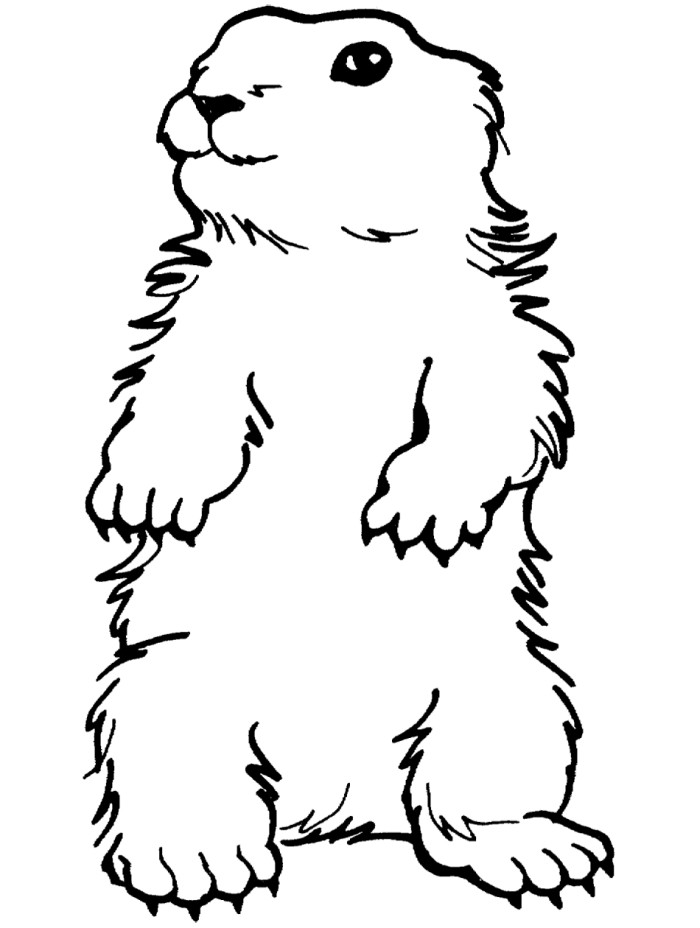 Woodchuck clipart black and white clip art royalty free library Free Groundhog Black And White Clipart, Download Free Clip ... clip art royalty free library