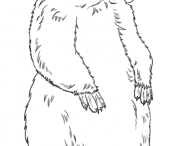 Woodchuck clipart black and white banner black and white stock Free Groundhog Clipart, Download Free Clip Art on Owips.com banner black and white stock