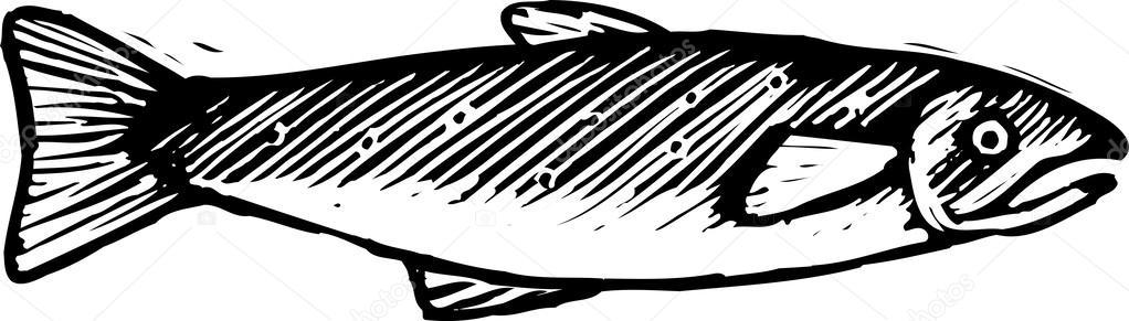 Woodcut fish clipart image royalty free stock Salmon clipart woodcut - 75 transparent clip arts, images ... image royalty free stock