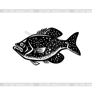 Woodcut fish clipart vector library stock Crappie Fish Woodcut - vector clipart vector library stock