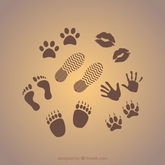 Wood flat feet footprint clipart graphic library stock Footprints Vectors, Photos and PSD files | Free Download graphic library stock