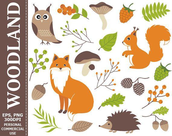 Woodland acorn clipart svg stock Digital Woodland Clipart - Fox, Squirrel, Owl, Hedgehog ... svg stock