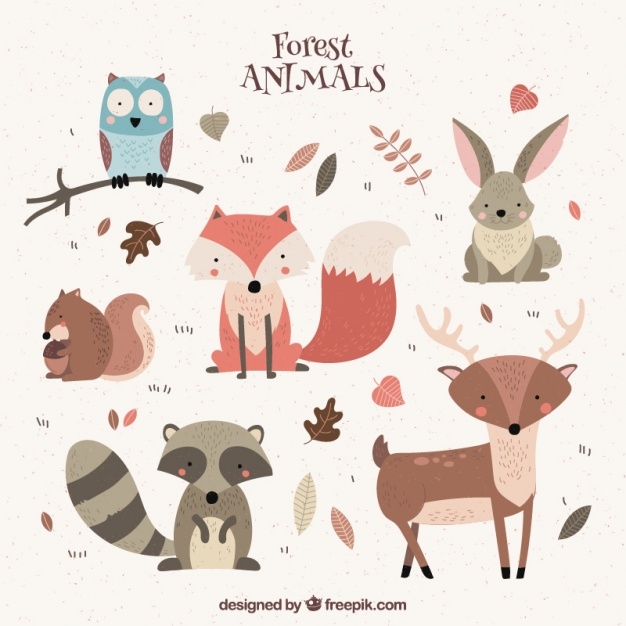 Watercolor woodland animals clipart free svg transparent Woodland Animals Vectors, Photos and PSD files | Free Download svg transparent
