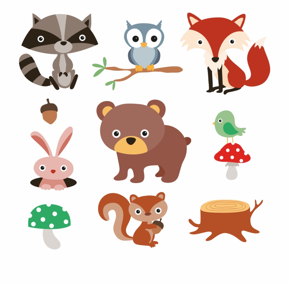 Woodland free raccoon clipart transparent stock Squirrel Raccoon Cartoon Forest And Plants Material ... transparent stock