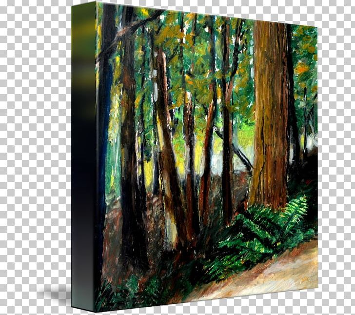 Woodland trail clipart clipart black and white stock Woodland Painting Trail Canvas Print Drawing PNG, Clipart ... clipart black and white stock