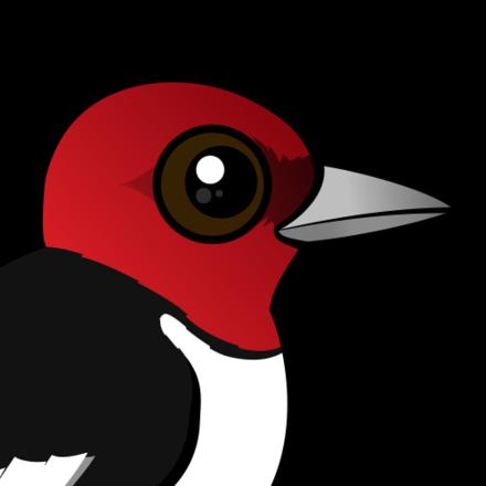 Woodpeckers flying clipart clip download Cartoon Red-headed Woodpecker < Meet the Birdorable clip download