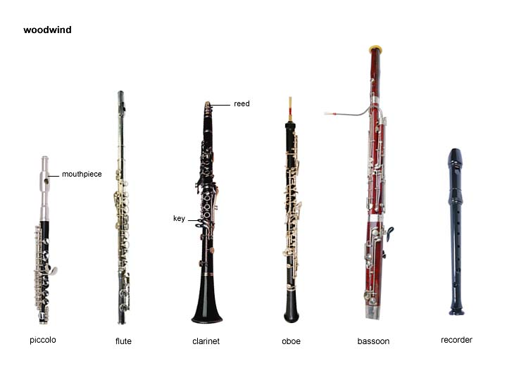 Woodwind instruments clipart svg library library Download woodwind instruments in the orchestra clipart ... svg library library