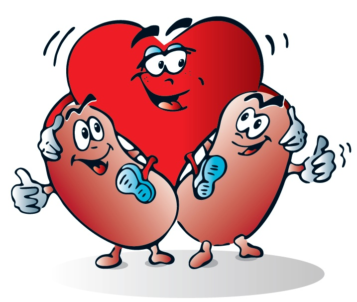 World kidney day clipart graphic black and white 981382020179_cartoonheart2011.jpg - World Kidney Day graphic black and white