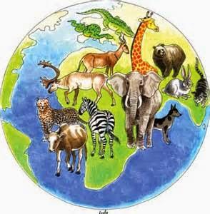 World wildlife day clipart