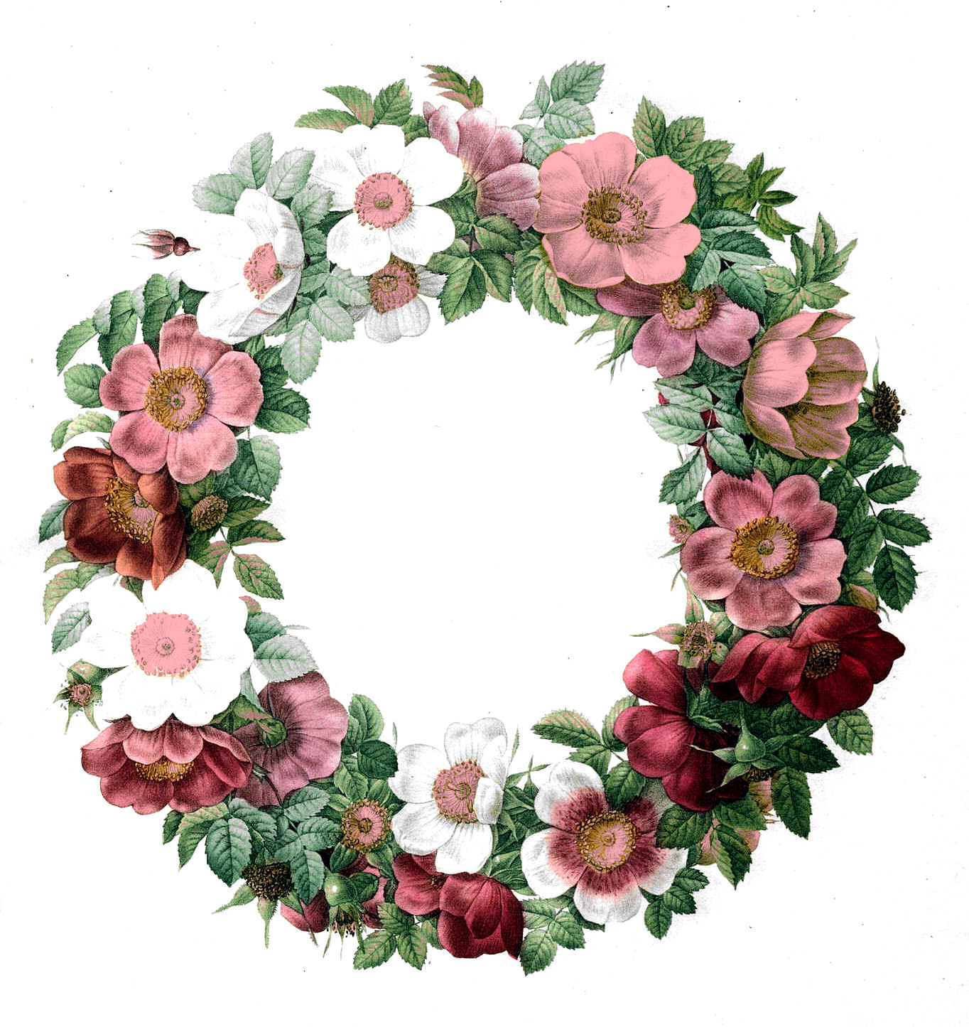 Wreath of flower clipart png clip royalty free stock Wreath of flowers clipart - ClipartFest clip royalty free stock