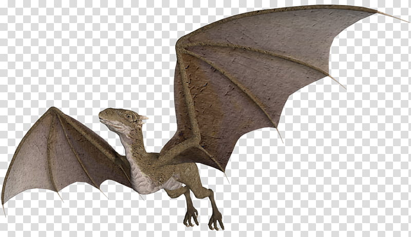 Wyvern clipart ext ong jpg library library Wyvern in flight, gray dinosaur illustration transparent ... jpg library library