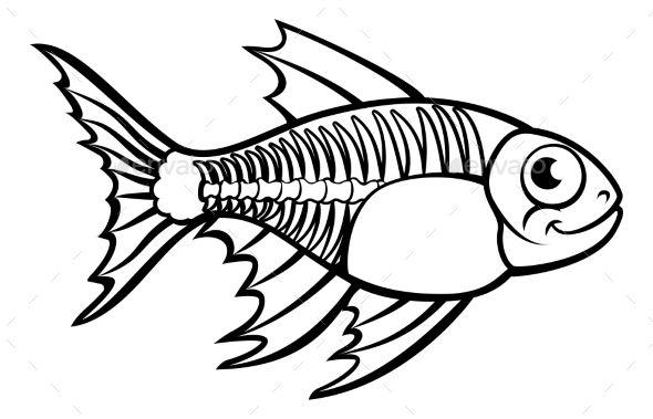 X ray drawing clipart jpg library download An X Ray Tetra Fish animal cartoon character outline ... jpg library download