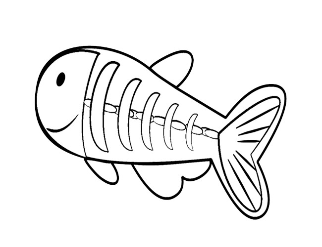X ray drawing clipart svg stock X Ray Fish Drawing at PaintingValley.com | Explore ... svg stock