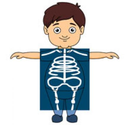 Xray clipart for kids library Xray clipart - 198 transparent clip arts, images and ... library