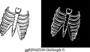 Xray spine clipart free banner stock Royalty Free Spine Xray Clip Art - GoGraph banner stock