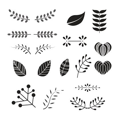 Yaprak vektor clipart picture black and white download Leaf and Branch Vector, Ornament Set premium clipart ... picture black and white download