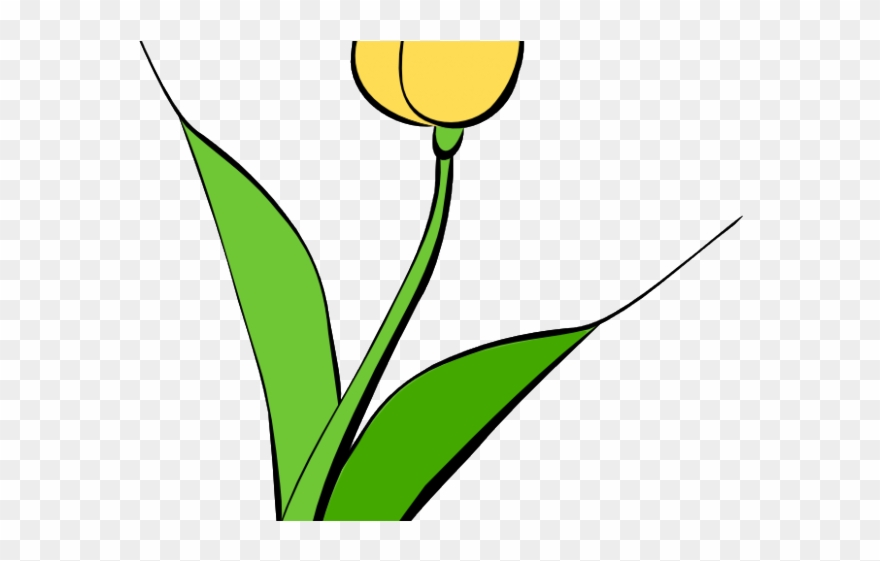 Yellow tulip clipart flower clipart free stock Tulip Clipart Yellow Tulip - Png Download (#2552756 ... clipart free stock