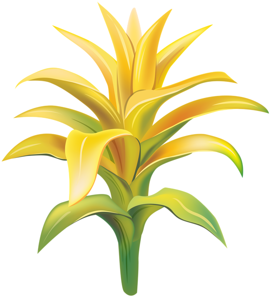 Yellow bell flower clipart png transparent stock Yellow Exotic Flower Transparent Clip Art Image | Gallery ... png transparent stock