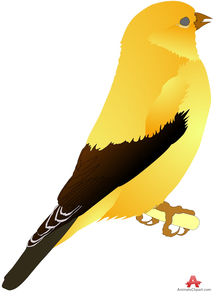 Yellow bird clipart free picture transparent Canary yellow bird clipart free clipart design download ... picture transparent