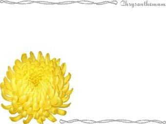Yellow chrysanthemum clipart banner black and white Free Chrysanthemum Cliparts, Download Free Clip Art, Free ... banner black and white