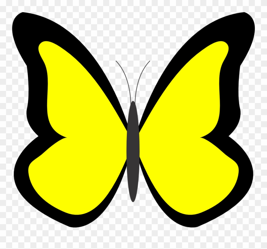 Yellow clipart pictures picture library download Purple Butterfly Border Clipart - Butterfly In Yellow Colour ... picture library download