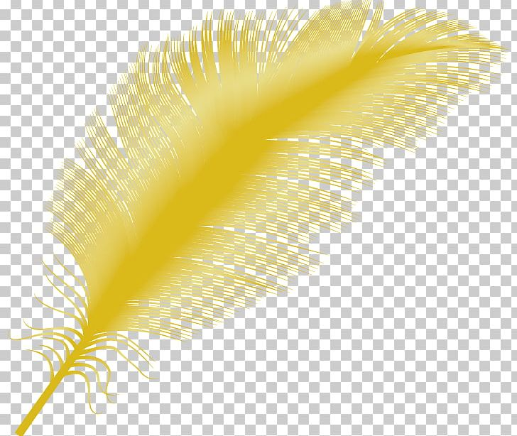 Yellow feather clipart clipart stock Yellow Feather Close-up PNG, Clipart, Animals, Change ... clipart stock