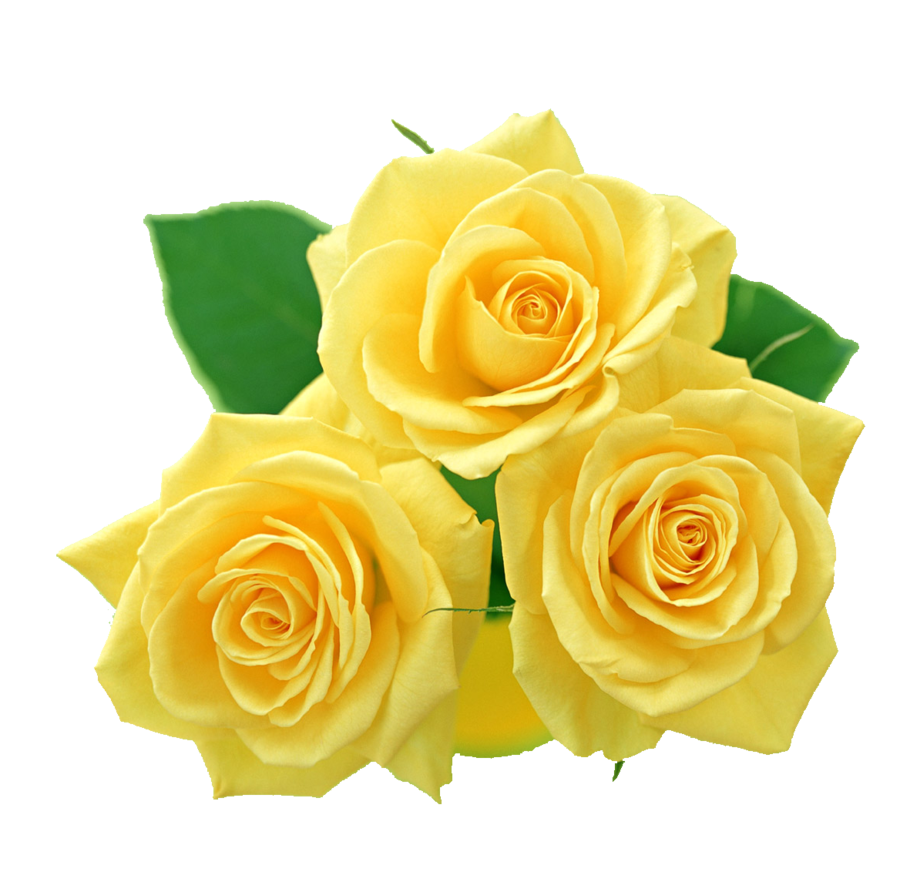 Yellow flower clipart png graphic black and white library Yellow Rose Clipart & Yellow Rose Clip Art Images - ClipartALL.com graphic black and white library