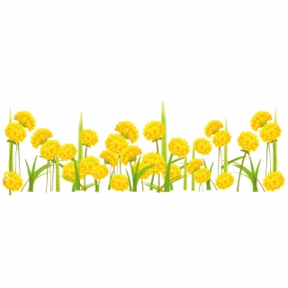 Yellow flower no background clipart clip black and white download HD Dandelion Png - Clipart Flowers On Transparent Background ... clip black and white download