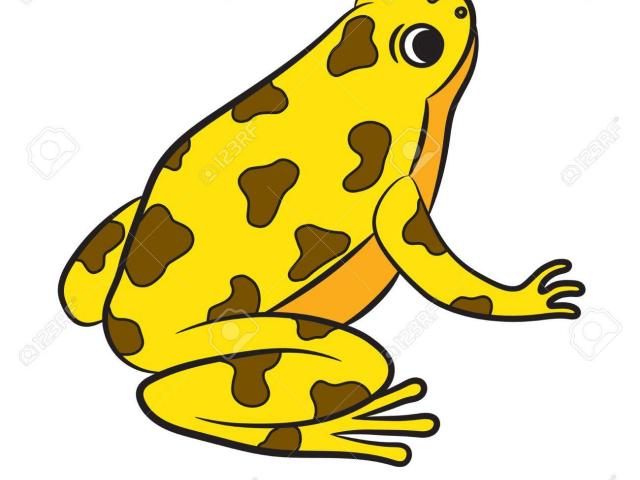 Yellow frog clipart graphic library library Free Poison Dart Frog Clipart, Download Free Clip Art on ... graphic library library