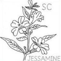 Yellow jasmine clipart clip library stock Yellow Jasmine Clipart – 2.000.000 Cool Cliparts, Stock ... clip library stock