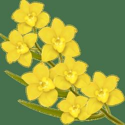 Yellow jasmine clipart royalty free stock Yellow Jasmine Flower Clipart | Gardening: Flower and Vegetables royalty free stock