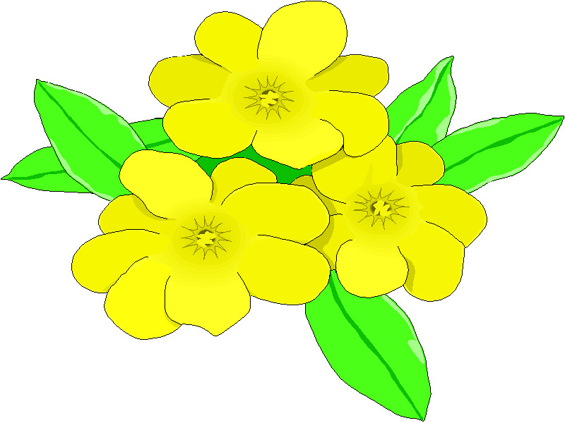 Yellow jasmine clipart jpg royalty free Flower, Yellow, Plant, Graphics png clipart free download jpg royalty free