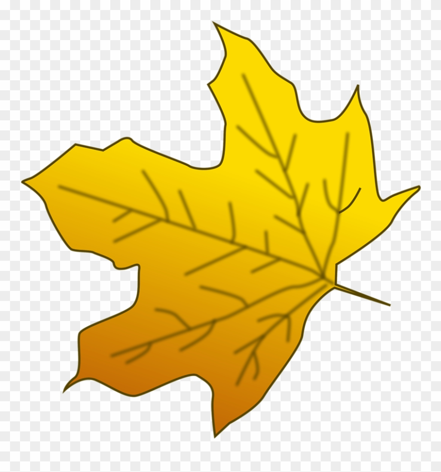 Yellow leaves clipart banner royalty free download Illustration Of A Yellow Autumn Leaf - Yellow Leaves Clipart ... banner royalty free download