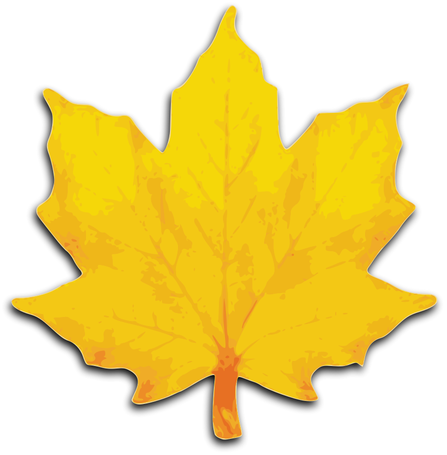 Yellow oak leaf clipart image black and white stock Free Autumn Leaf Clipart, Download Free Clip Art, Free Clip ... image black and white stock