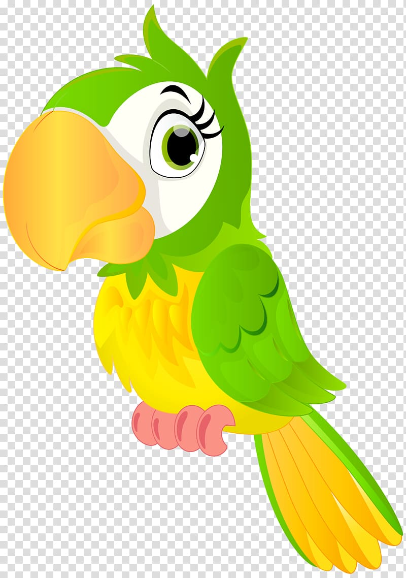 Yellow parrot pirate clipart jpg free library Green and yellow parrot illustration, Parrot Bird , Parrot ... jpg free library