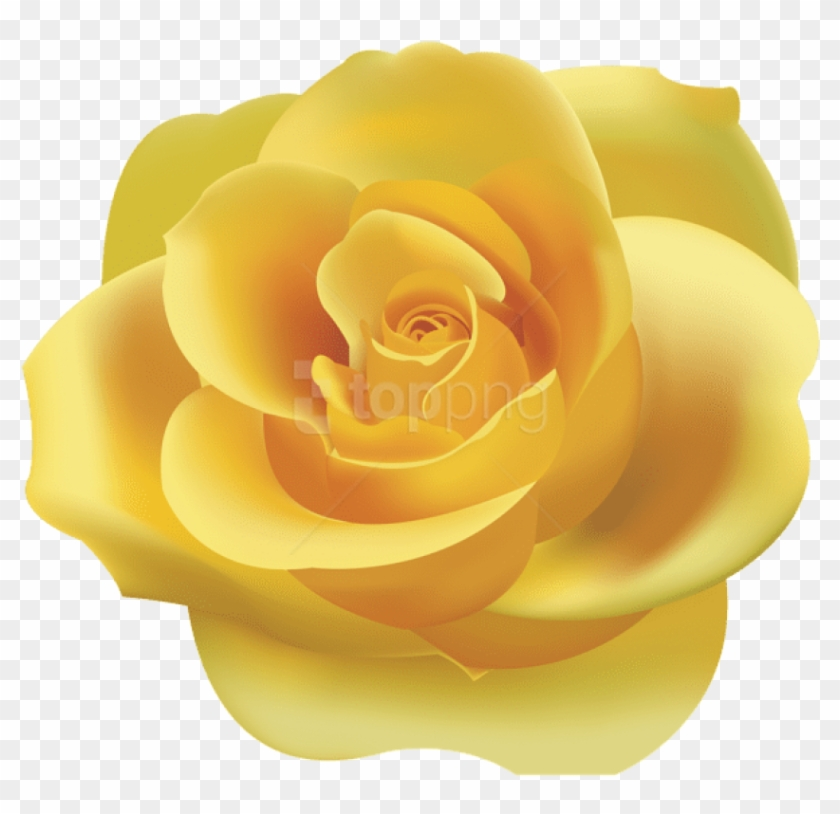 Yellow rose clipart png picture library Download Yellow Rose Png Png Images Background - Yellow Rose ... picture library