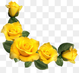 Yellow rose clipart png clip transparent stock Free download Rose Yellow Clip art - Beautiful Yellow Roses ... clip transparent stock