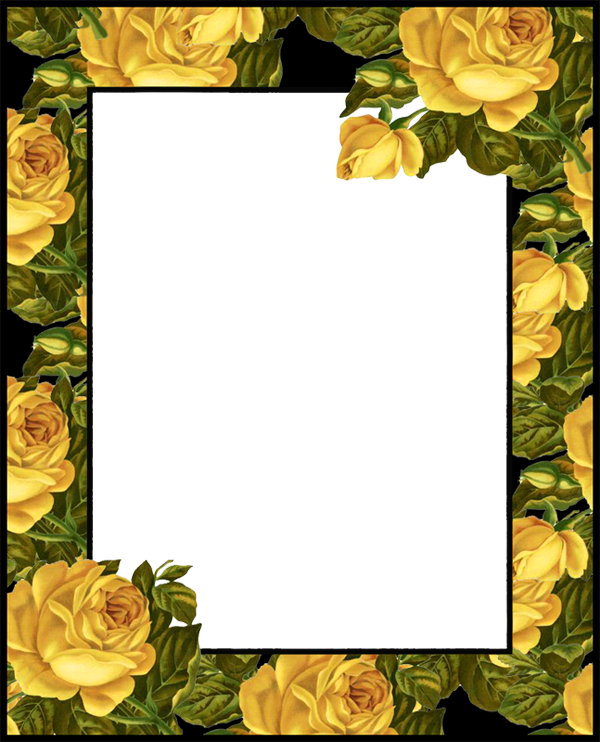 Yellow rose frame clipart picture transparent stock Transparent PNG Photo Frame with Yellow Roses | Gallery ... picture transparent stock