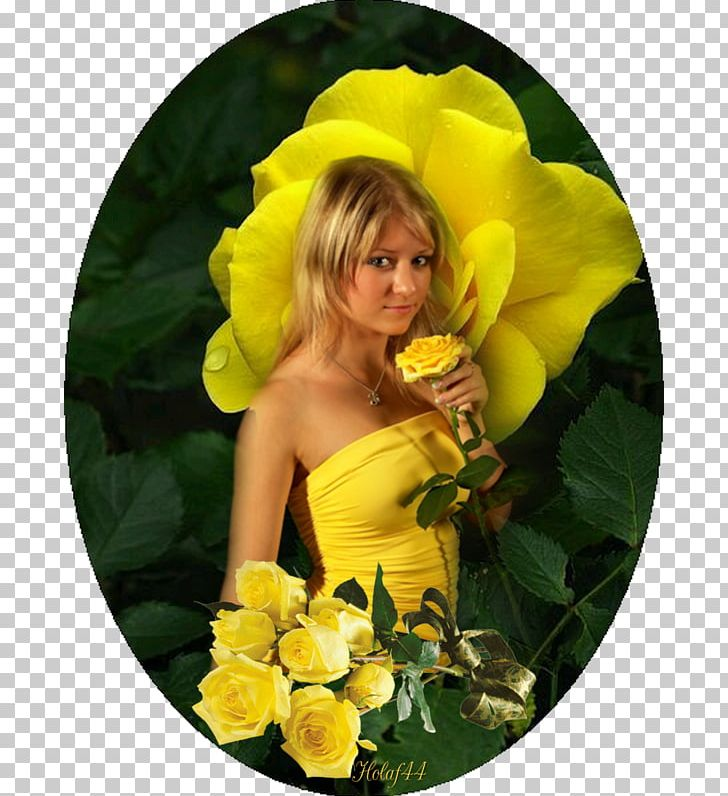 Yellow rose friendship clipart image freeuse download Yellow Garden Roses Friendship Color PNG, Clipart, Color ... image freeuse download
